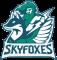 Мета Skyfoxes